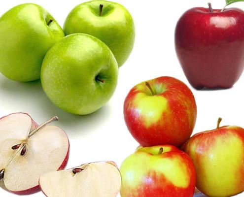 mela quadr